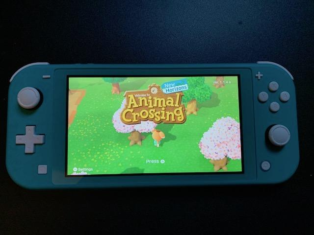 animal crossing nintendo switch in game item
