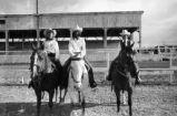 Buckaroo Rodeo Royalty