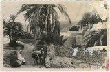 BOU-SAADA (Alger), A l'entree du Village.