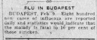 Flu in Budapest
