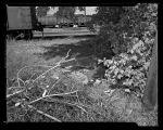 Tramps, Villages in S.L.C. -Shot 1