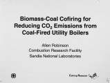 Biomass Coal Cofiring for Reduced CO2 Emissions from Coal Fired Utility Boilers