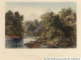 Forest Scene on the Lehigh (Pennsylvania)
