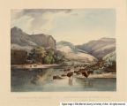 Herds of Bisons and Elks on the upper Missouri