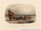 Dog-Sledges of the Mandan Indians