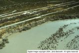 Sevier River flood of 1983, vicinity of Delta, Utah [024]