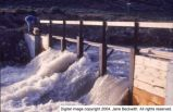 Sevier River flood of 1983, vicinity of Delta, Utah [007]