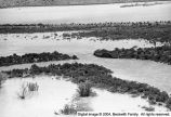 Sevier River flood of 1983, vicinity of Delta, Utah [103];