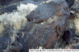 Great Stone Face area petroglyphs [17]