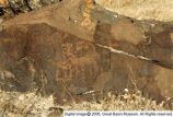Great Stone Face area petroglyphs [21]