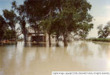Deseret flood 1983 [18]