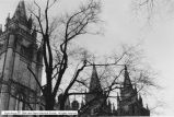Salt Lake Temple p.86