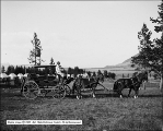 Four Horse Coach at Swan Lake Camp