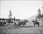 Two Horse Rig at Swan Lake Camp