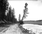 Yellowstone, Drive Along Madison River
