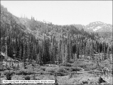 Big Cottonwood Canyon, Brighton Panorama #1