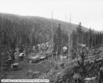 General View of Gibbon, Yellowstone Park