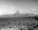 Wasatch Mountains From Spanish Fork