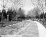 Road at Mt. Olivet Cemetery