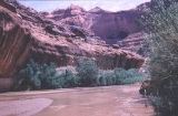 Amphitheater to Mystery Canyon - Escalante River