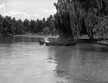 Woman canoeing on a lake at Wandamere Park.