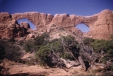 Arches National Park: North Window and South Window