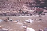13-Foot rapid on San Juan River, Nevills / Fox Movietone Expedition, 1944