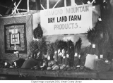 1926 Uintah County Fair