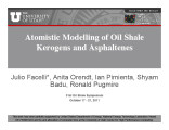 Atomistic modelling of oil shale kerogens and asphaltenes