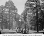 Automobile & men in pine forest