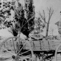 Pete and Jimmie in wagon with team of horses; Cedar City, Iron County, Utah