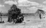 Typical Navajo Indian camp showing summer and winter hogans