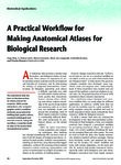 A practical workflow for making anatomical atlases for biological research